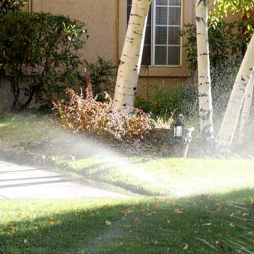 Irrigation sprinkler house lawn