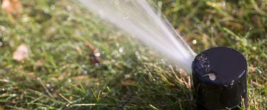 Irrigation System Efficiency Audit